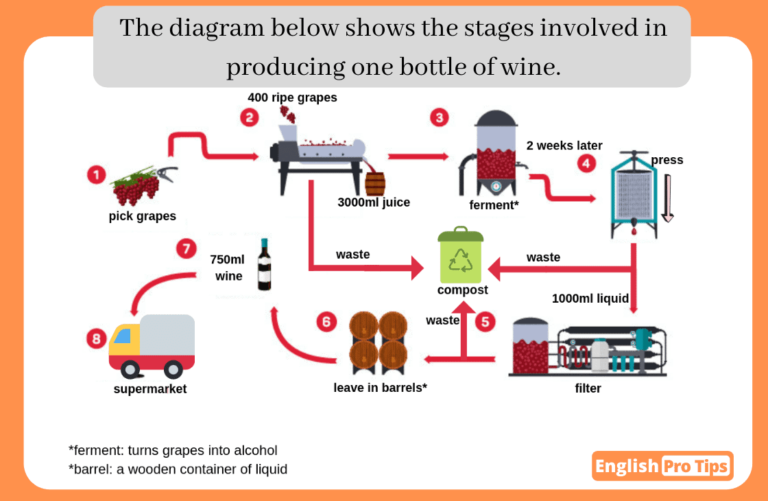 Graphics and T1 overview quiz (12) (1)